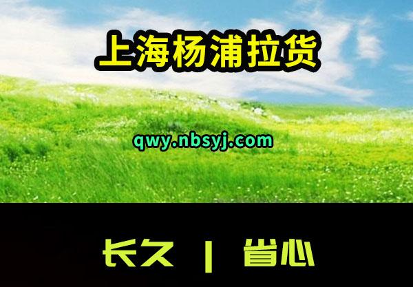 上海杨浦拉货搬家售后有保障