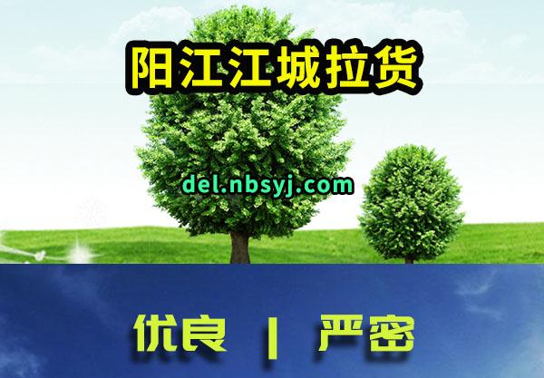 阳江江城拉货搬家更加放心